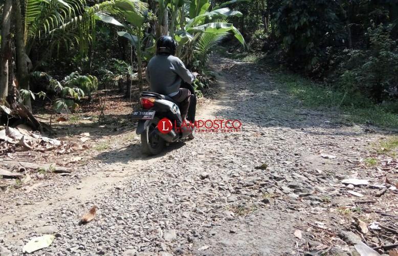 Dua Paket Proyek di Kecamatan Rajabasa yang Menyeret Zainudin