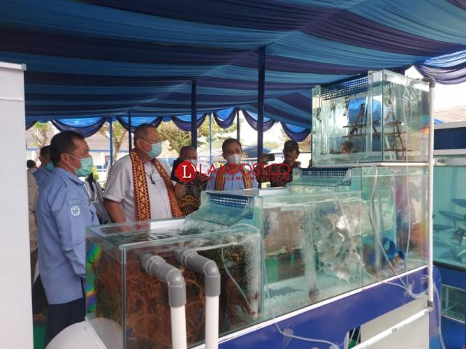 Dukung Sektor Perikanan, Anggaran BBPBL akan Ditambah