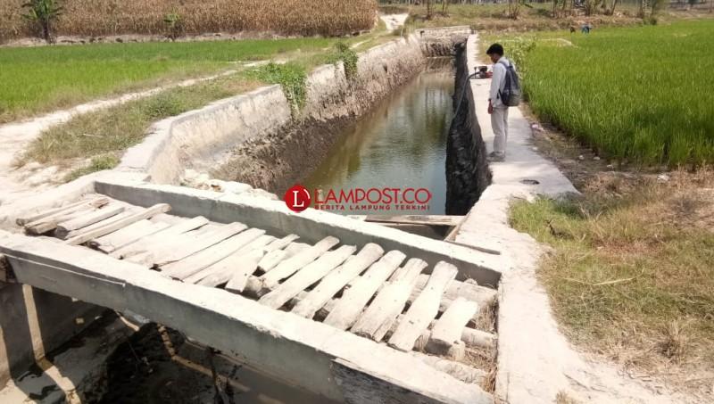 Embung di Desa Bangunan Belum Maksimal Tampung Air Saat Hujan