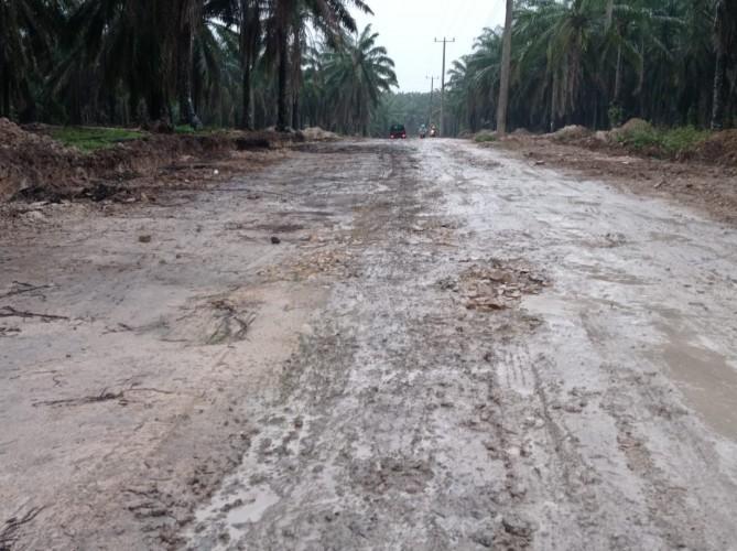 Empat Ibu Hamil Keguguran karena Melintasi Jalan Rusak di Rejosari Selama 2021