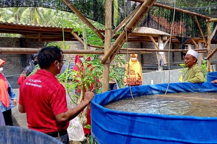 Forum Pendidik Sukanegara Kunjungi Lokasi Pembudidayaan Lele Bioflok di Kalianda