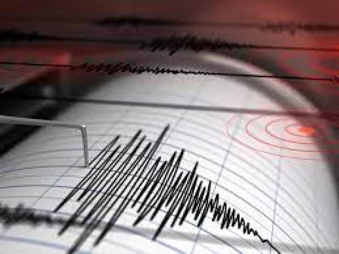 Gempa 5 Magnitudo Guncang Pesisir Barat