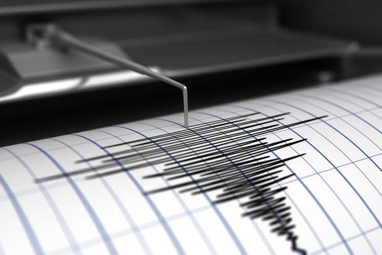 Gempa Susulan Guncang Selandia Baru