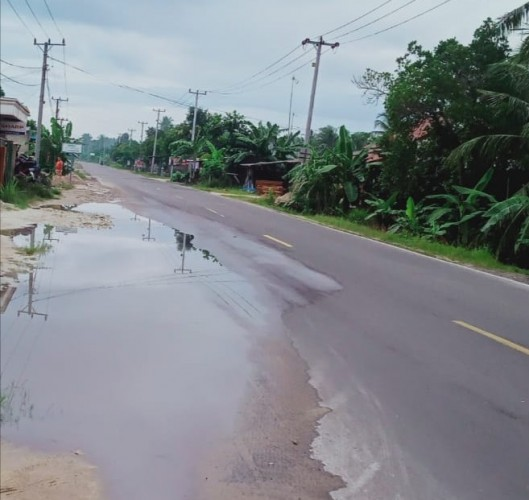 Genangan Air di Sejumlah Bahu Jalan Jalinpantim Ketapang Potensi Timbulkan Kecelakaan