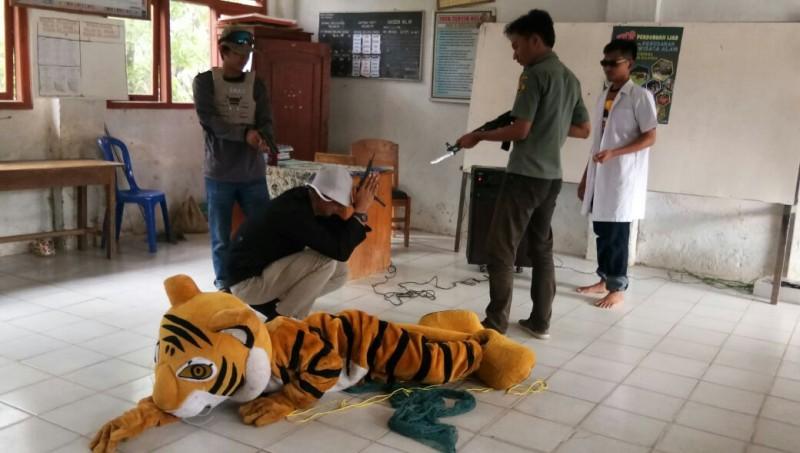 Global Tiger Day Ajak Masyarakat Peduli Habitat Harimau Sumatera