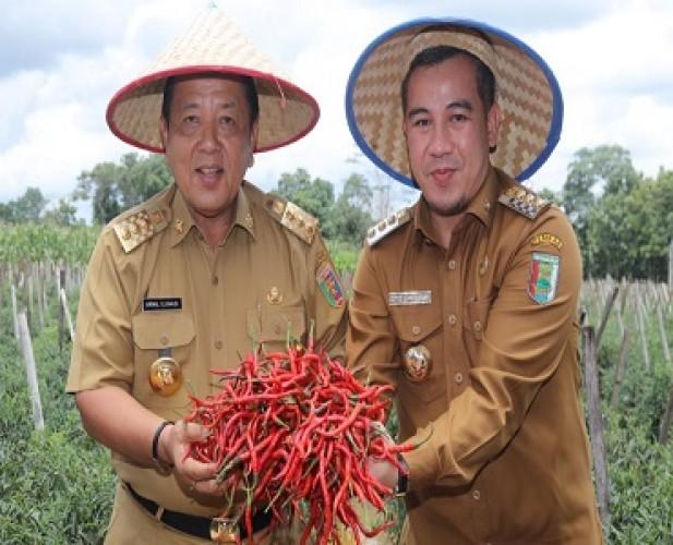 Gubernur Berikan Solusi Permasalahan Petani Cabai