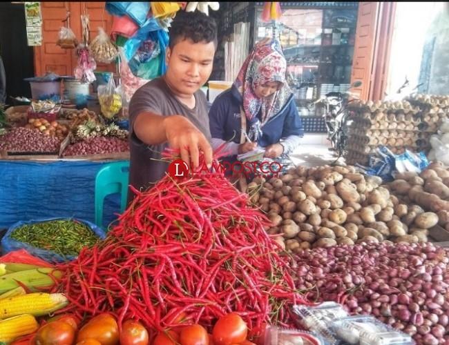 Harga Anjlok Pembeli Tetap Sepi, Pedagang Cabai di Lamsel Merana