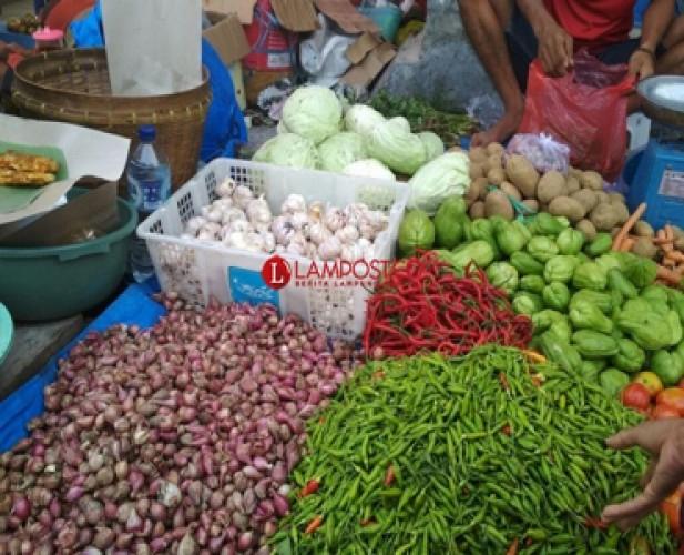 Harga Bawang di Bandar Lampung Mulai Naik