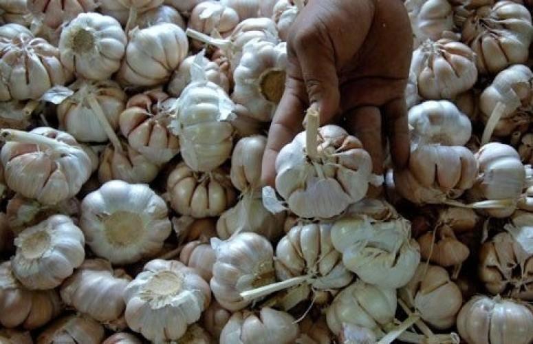 Harga Bawang Putih di Pasar Bandar Lampung Mulai Alami Penurunan