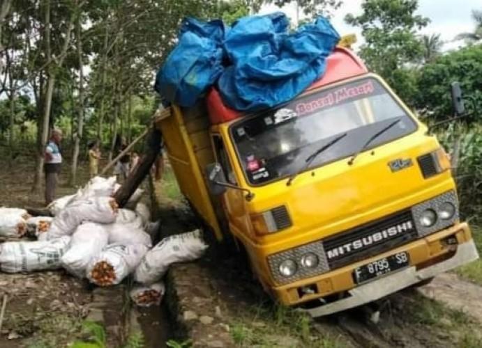 Harga Jagung di Empat Kecamatan Lampung Selatan Berangsur Turun