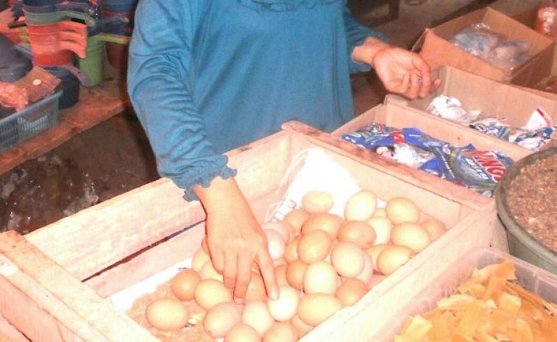 Harga Telur dan Daging Ayam di Lampung Selatan Stabil