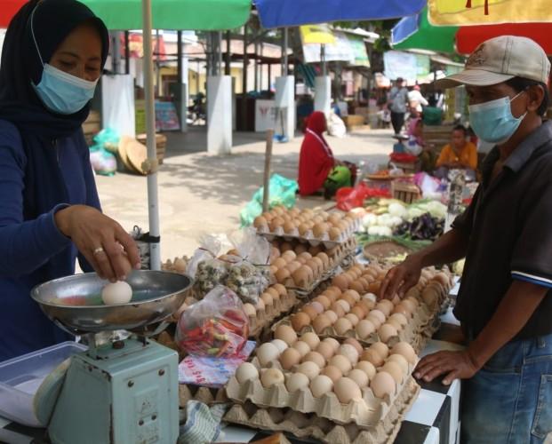 Harga Telur di Lampung Kembali Stabil