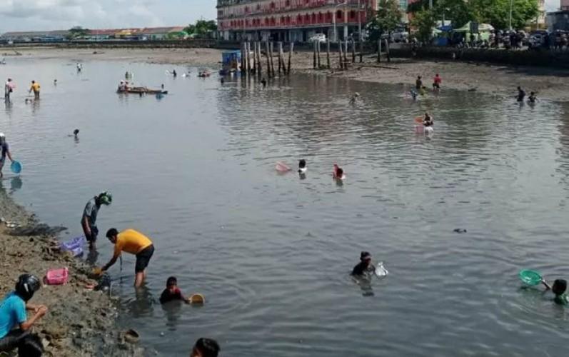 Heboh Ribuan Ikan Muncul di Permukaan Sungai Baubau