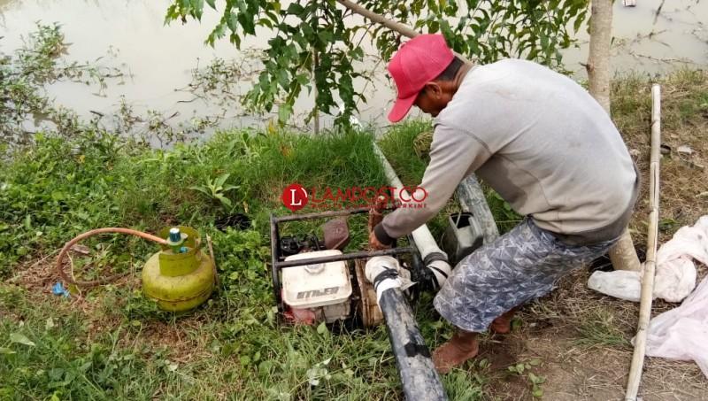 Hemat Biaya, Petani Manfaatkan Tabung Gas untuk Sedot Air