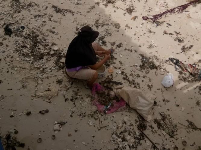 <i>Landak Laut Penyambung Nafkah Keluarga di Pantai Labuhan Jukung</i>