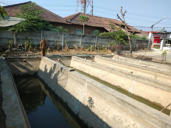 Indukan Ikan di Pringsewu Berkurang 5% Selama Kemarau
