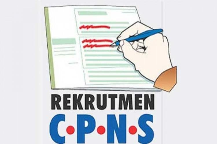 Ini Jadwal Pelaksanaan Tes CPNS 2020