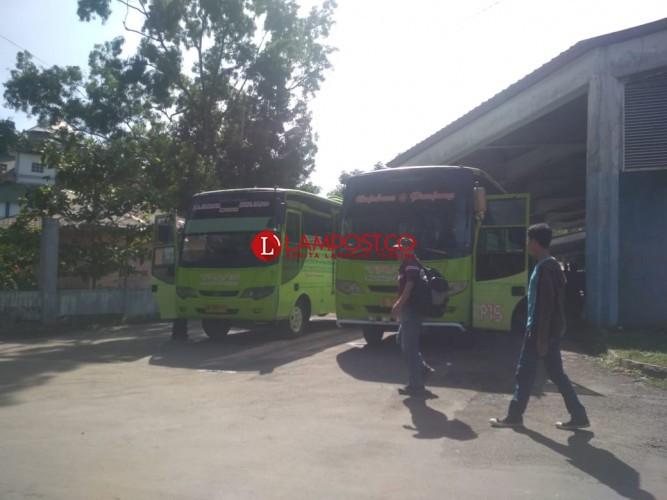 Ini Kata Pengamat Transportasi Soal BRT Kota Bandar Lampung