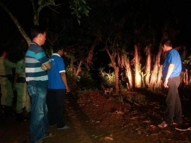 Ini Penjelasan Dinas Pertanian Lampura soal Kera Menggigit Warga Kelapatujuh