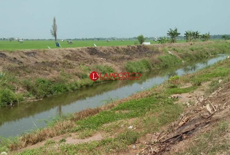 Intrusi, Sungai Way Pisang Berubah Asin