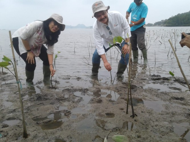 Jaga Ekosistem Laut, Japfa Tanam Mangrove