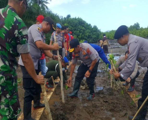 Jaga Kelestarian, Polda Tanam Pohon Mangrove di Pulau Rimau