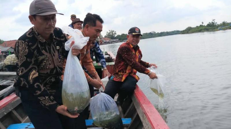 Jaga Keseimbangan Alam, Pemkab Mesuji Tebar 240.000 Benih Ikan di Sungai Mesuji