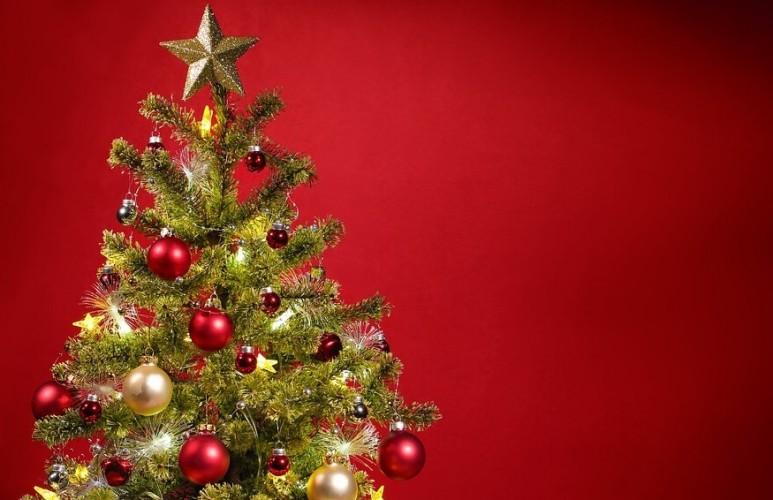 Jaga Nilai Kebangsaan, PGI Rayakan Natal Bertema Persahabatan