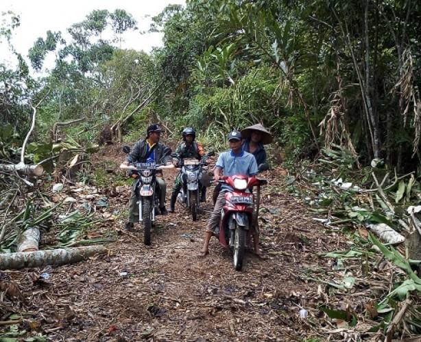 Jalan Pekon Ringinjaya Dianggarkan di 2019