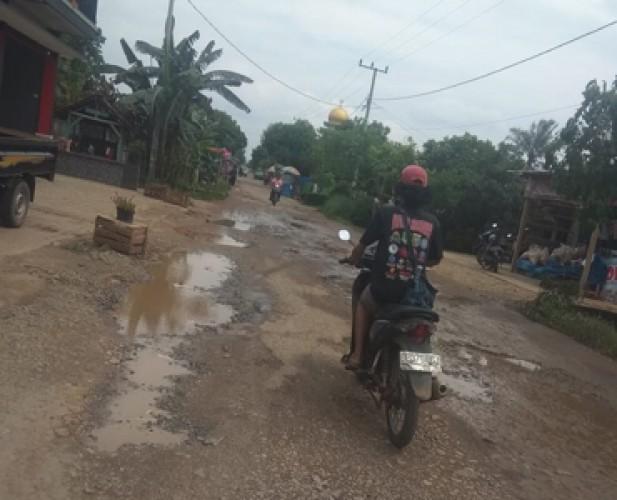 Jalan Penghubung di Sukoharjo Butuh Perhatian Pemkab Pringsewu