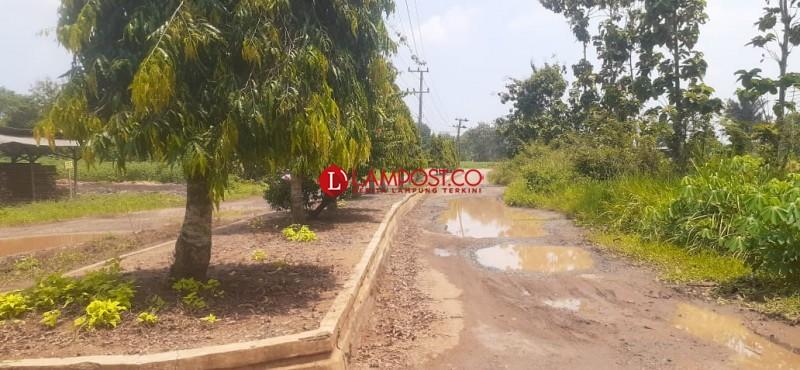 Jalan Rusak di Lampung Utara Lebih dari 50 Persen