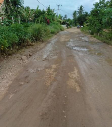 Jalan Rusak di Pringsewu Sulitkan Akses Warga