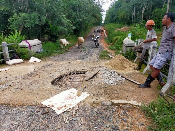 Jembatan Akses Utama Desa Harapan Jaya Jebol