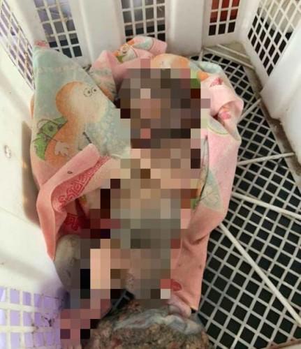 Jenazah Bayi Ditemukan Mengambang di Kampung Sinar Laut
