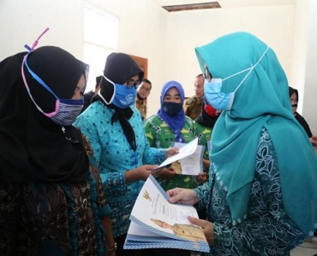 Kader Posyandu di 2 Kecamatan Pesisir Barat Terima Insentif
