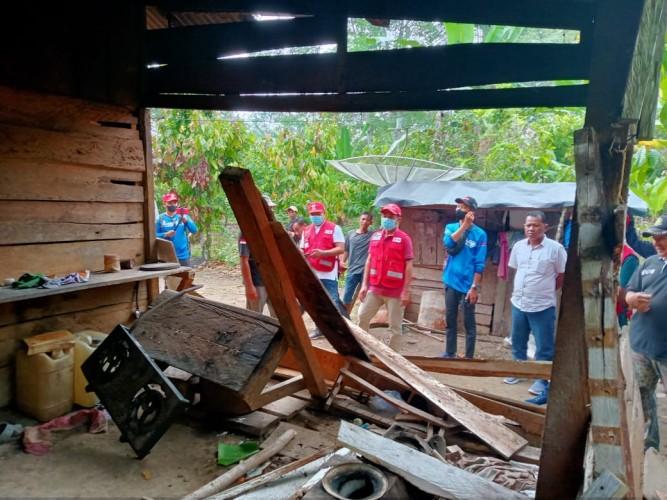 Kawanan Gajah Kembali Rusak Rumah Warga Lampung Barat