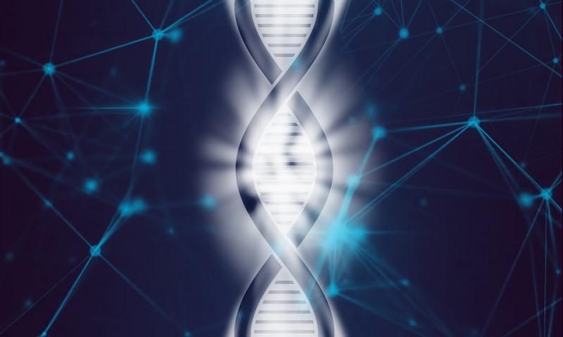 Kaya dan Sukses Ada dalam Gen