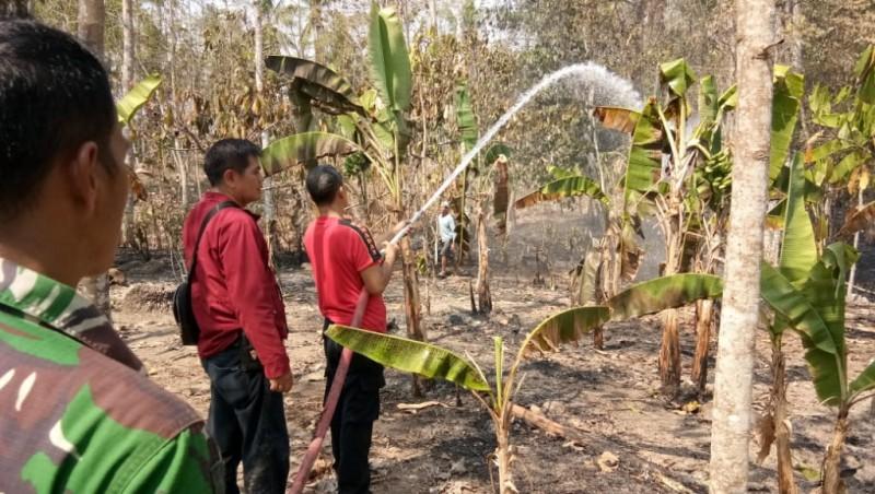 Kebakaran di Lamsel Didominasi Karhutla