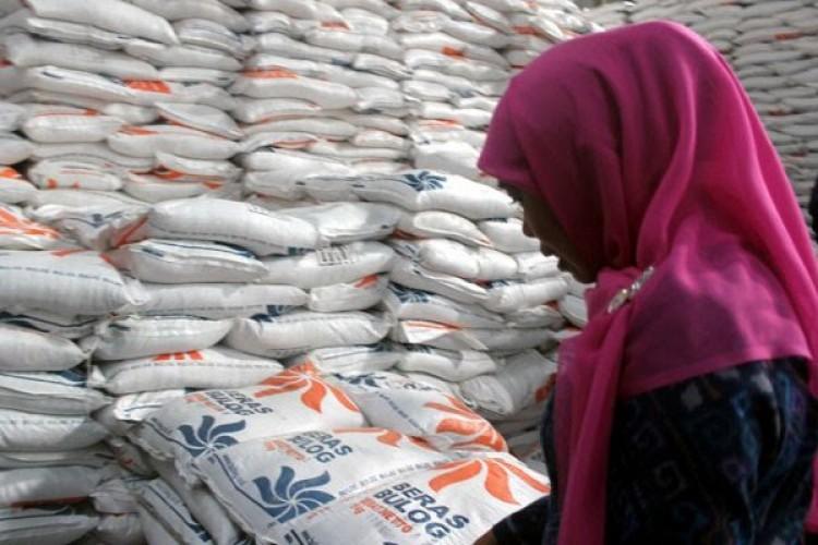 Kemarau Bakal Lama, Peneliti Khawatirkan Rerapan Beras Bulog