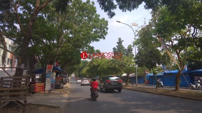Khawatir Tumbang, Warga Minta Pohon Rindang Ditebang