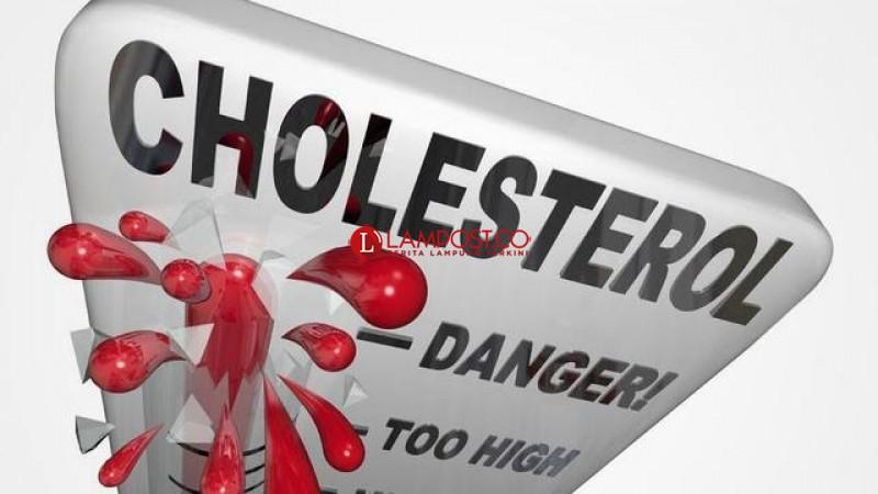 Kolesterol dan Imunoterapi Kanker