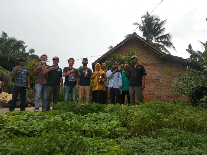 Komunitas Rumah Tangga di Tubaba Dapat Bantuan Bibit dari Maporina