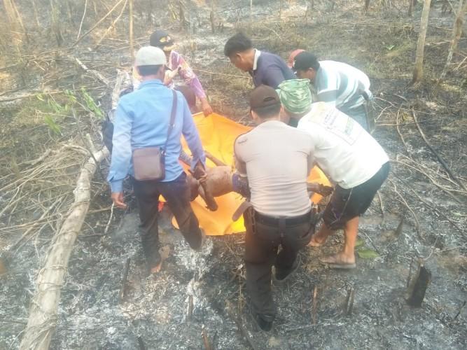 Kronologi Mayat Terbakar di Kebun Karet