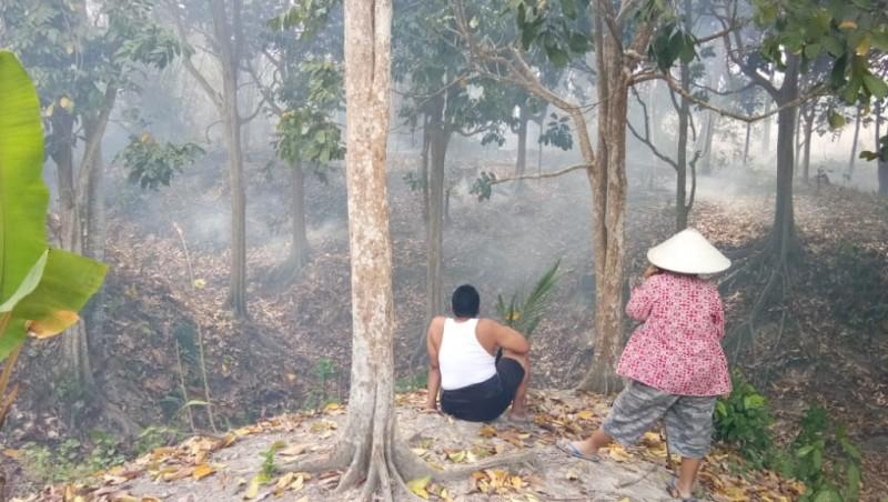Lahan Perkebunan Warga di Palas Terbakar