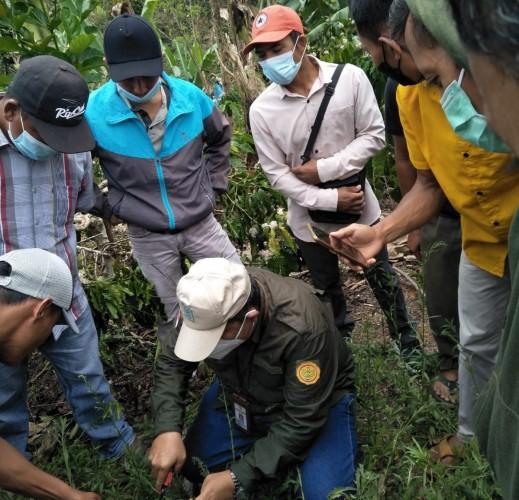 Lambar Genjot Kemampuan Budidaya Perkebunan dan Holtikultura