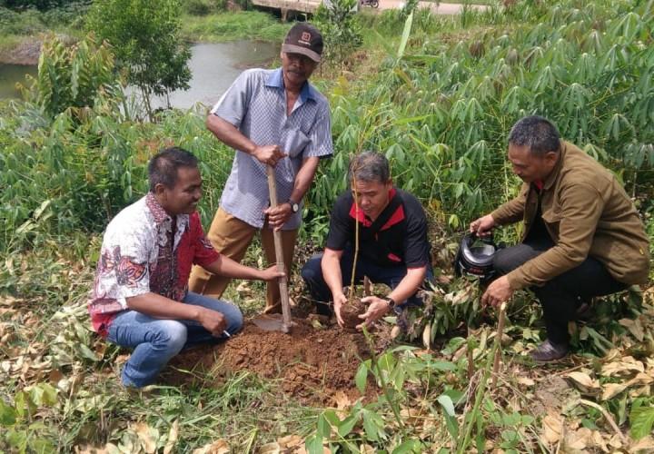 Lambu Kibang Pusat Konservasi Bambu Tulangbawang Barat