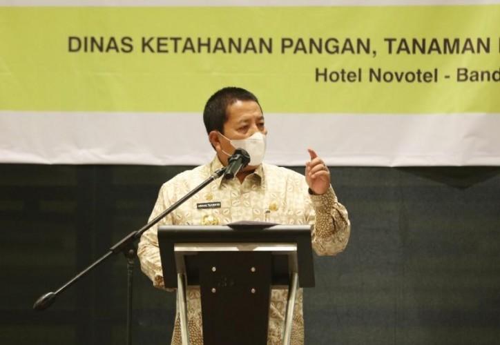 Lampung Optimalkan Keunggulan Kompetitif Pertanian