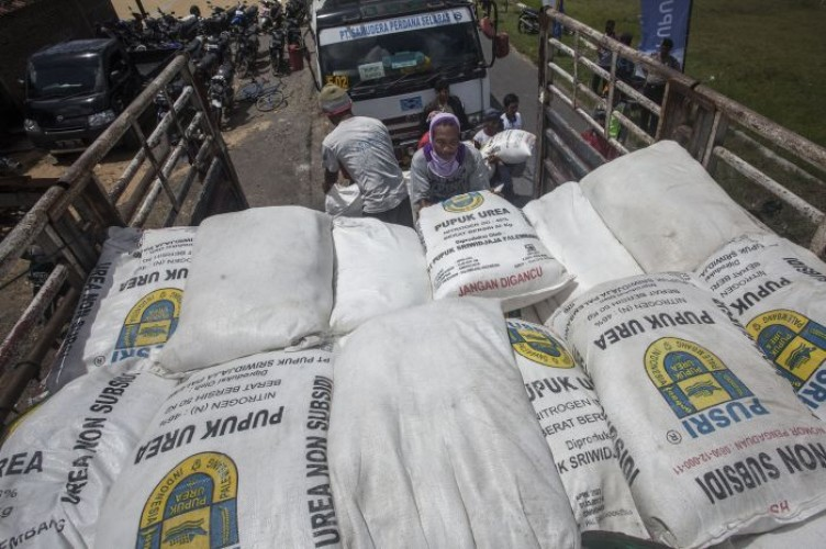 Lampung Selatan Ajukan Pupuk Subsidi untuk 225.014 Hektare