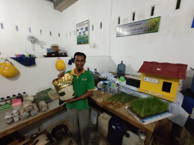 Lampung Tengah Mulai Produksi Beras Bebas Pestisida