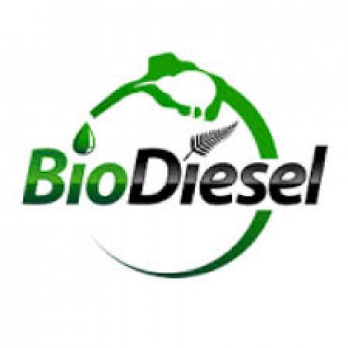 Lampung Terus Kembangkan Penggunaan Biodiesel dan EBT